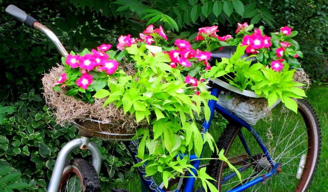 curso-de-jardinagem Arte reciclada