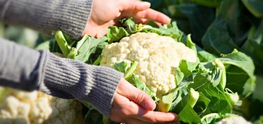Antepasto com talo de vegetais