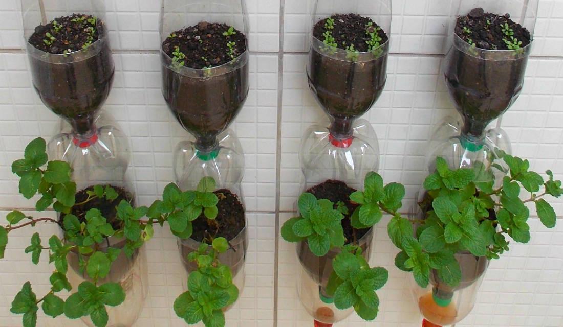 Jardim vertical com garrafas PET  Arte Reciclada