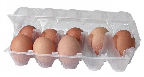 reciclagem-caixa-ovo-05